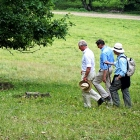 Prince Charles and Count Kalnoky hiking on ancient wood pasture grounds, Transylvania